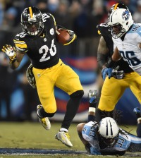 20141117pdSteelersSports16-3