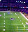 Saints_Stadium_(3927508936)